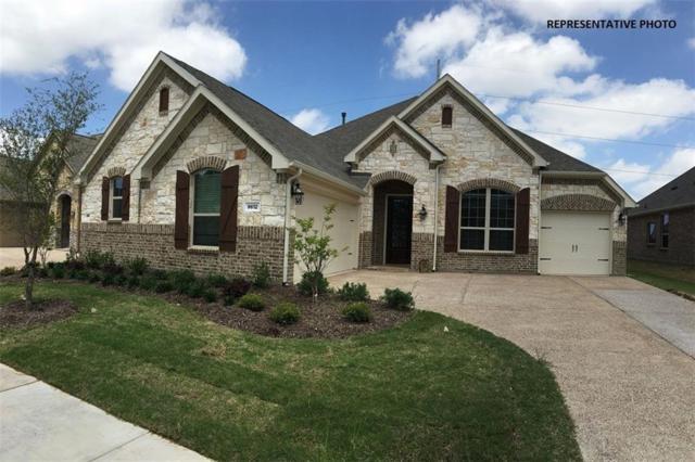 16236 Moss Haven Lane, Frisco, TX 75068 (MLS #13872799) :: Team Hodnett