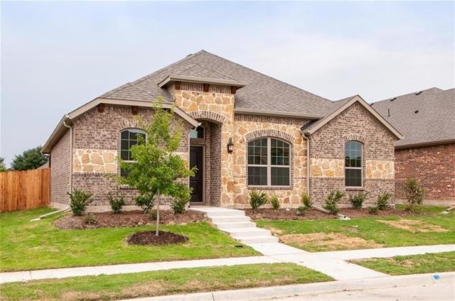 213 Melody, Red Oak, TX 75154 (MLS #13876714) :: Team Hodnett