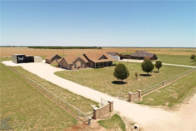 3984 Private Road 6051, Hawley, TX 79525 (MLS #13879422) :: The Tonya Harbin Team