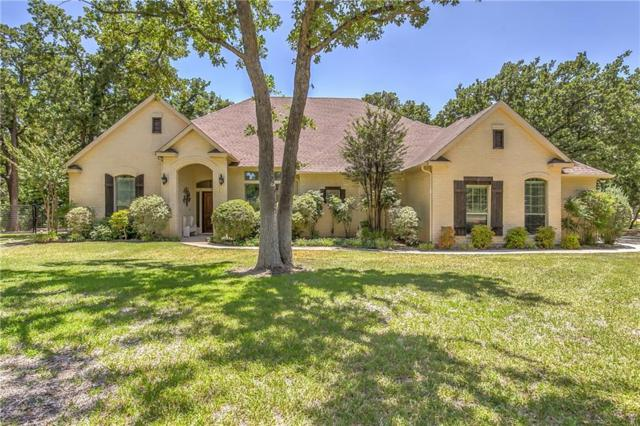 113 Coldwater Creek Lane, Weatherford, TX 76088 (MLS #13882147) :: Team Hodnett