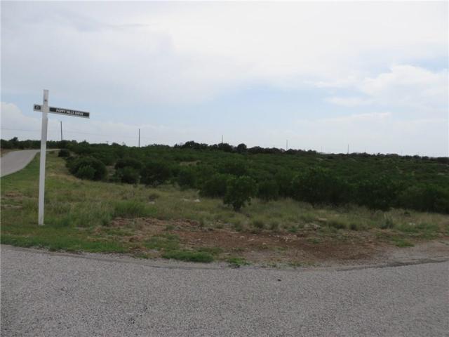 105 Poppy Hills Drive, Possum Kingdom Lake, TX 76449 (MLS #13890595) :: Robbins Real Estate Group
