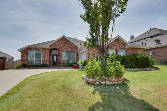 4605 Blue Mesa Lane, Mesquite, TX 75150 (MLS #13891766) :: The Real Estate Station