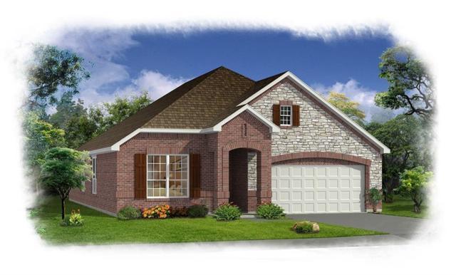 1736 Long Meadow, Wylie, TX 75098 (MLS #13896441) :: Team Hodnett