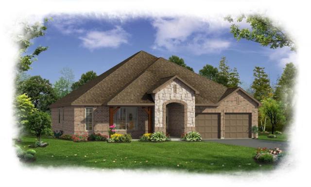 1706 Fox Meadow Drive, Wylie, TX 75098 (MLS #13896456) :: Robbins Real Estate Group