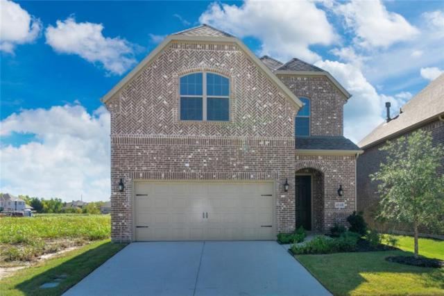 4548 El Paso Drive, Plano, TX 75024 (MLS #13897729) :: The Hornburg Real Estate Group