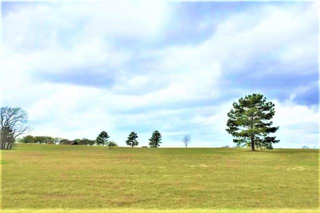 15585 County Road 424, Lindale, TX 75771 (MLS #13899774) :: Frankie Arthur Real Estate