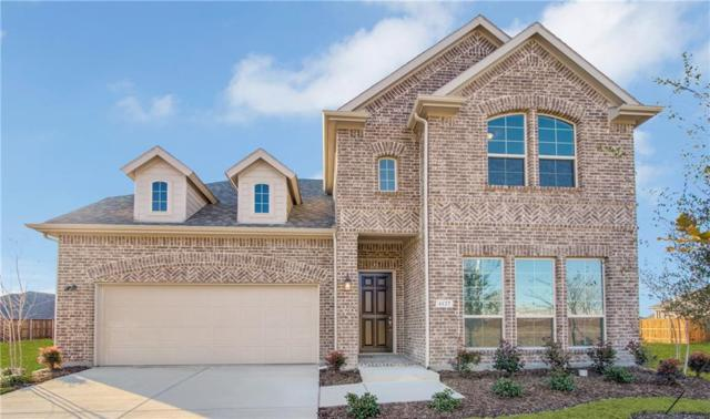 4127 Starlight Creek Drive, Celina, TX 75009 (MLS #13900810) :: Robbins Real Estate Group