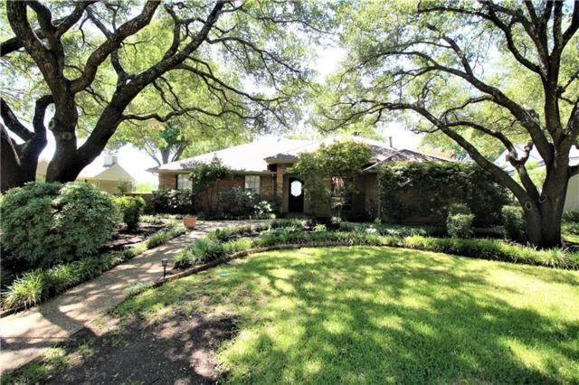 1655 Plummer Drive, Rockwall, TX 75087 (MLS #13902169) :: The Chad Smith Team
