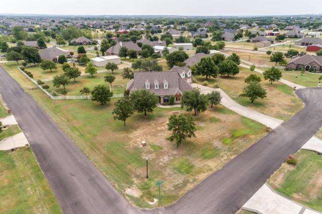 13916 Grant Springs Court, Haslet, TX 76052 (MLS #13902233) :: The Real Estate Station