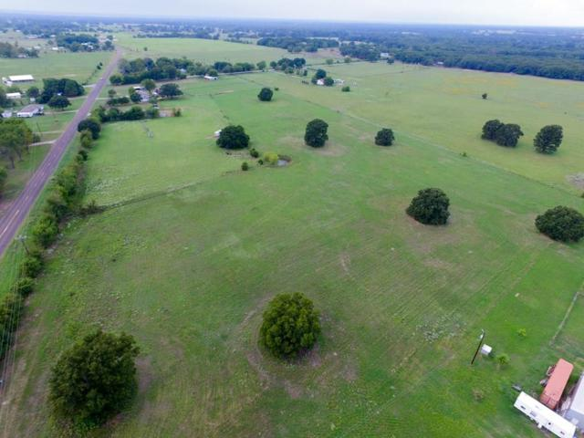 00 Fm 2451, Scurry, TX 75158 (MLS #13907603) :: The Real Estate Station