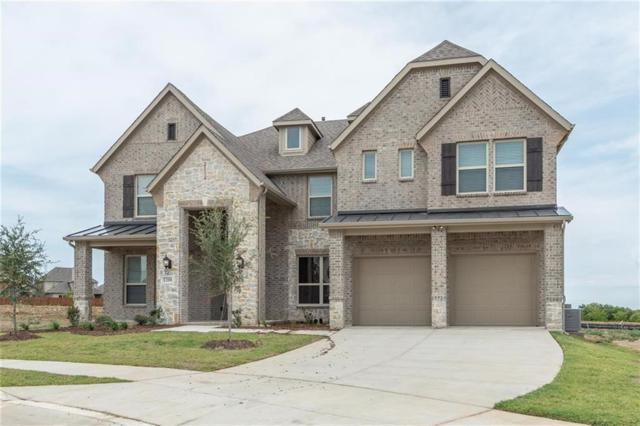 1200 Bayonet Street, Little Elm, TX 75068 (MLS #13907934) :: The Real Estate Station