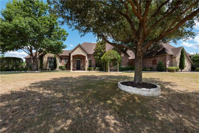 4003 Lost Hollow Court, Parker, TX 75002 (MLS #13908014) :: Team Hodnett