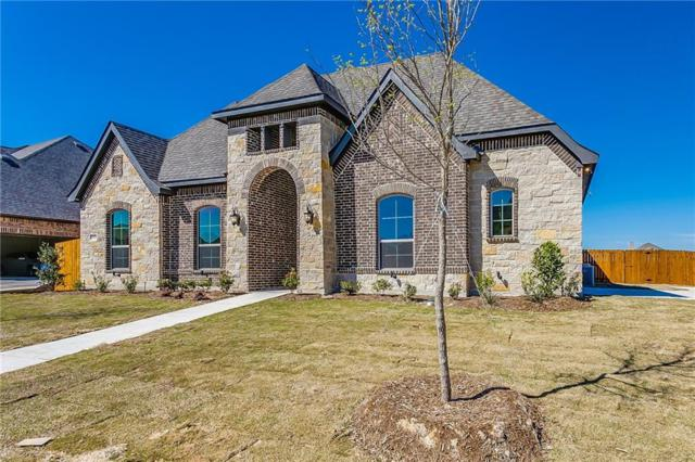 523 Harvest Grove Drive, Waxahachie, TX 75165 (MLS #13910822) :: The Chad Smith Team