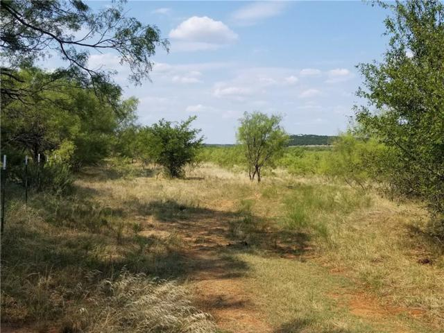 TBD N. Highway 16, Graford, TX 76449 (MLS #13913275) :: The Mitchell Group