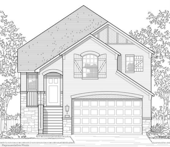 1208 Friesian Lane, Aubrey, TX 76227 (MLS #13916208) :: Robbins Real Estate Group