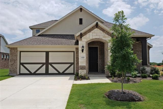 1121 Diamond Dove Drive, Little Elm, TX 75068 (MLS #13916362) :: Baldree Home Team
