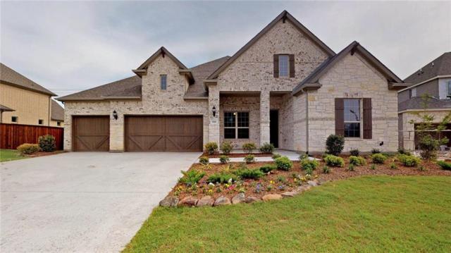 1816 Amazon Drive, Plano, TX 75075 (MLS #13916423) :: Baldree Home Team