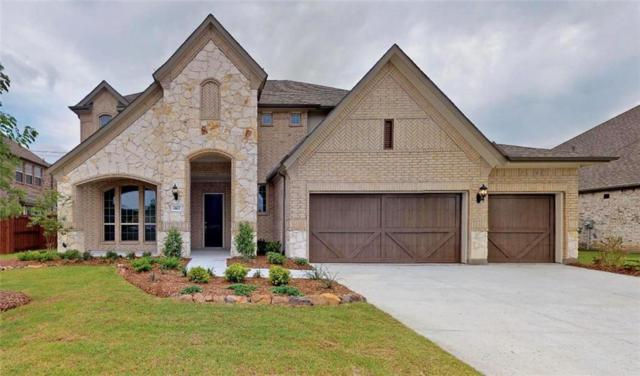 1812 Amazon Drive, Plano, TX 75075 (MLS #13916503) :: The Real Estate Station