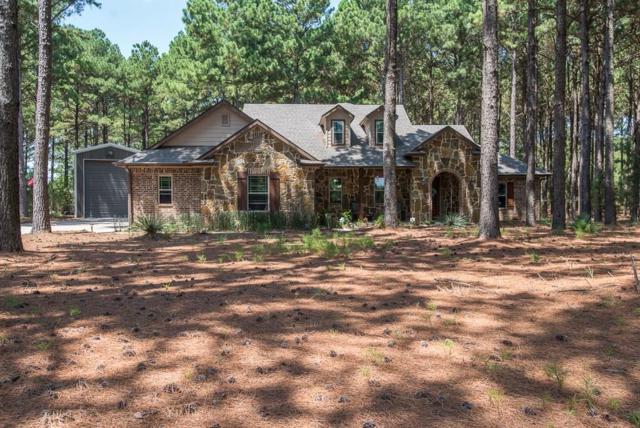 6971 Waters Edge Drive, Larue, TX 75770 (MLS #13918335) :: Robbins Real Estate Group