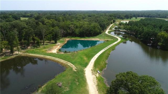 201 Vz County Road 2917, Eustace, TX 75124 (MLS #13925929) :: Baldree Home Team