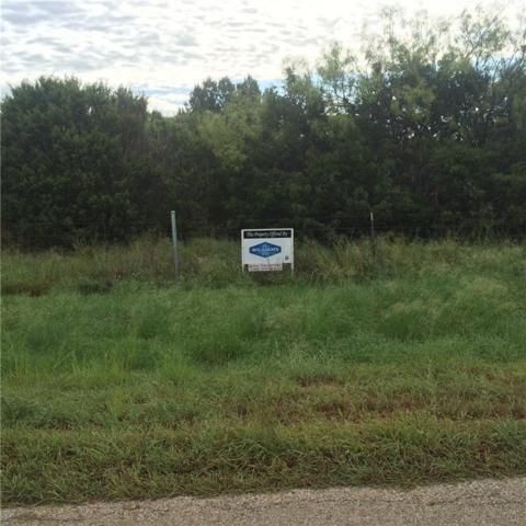 TBD Cr 301A, Glen Rose, TX 76043 (MLS #13927988) :: Potts Realty Group