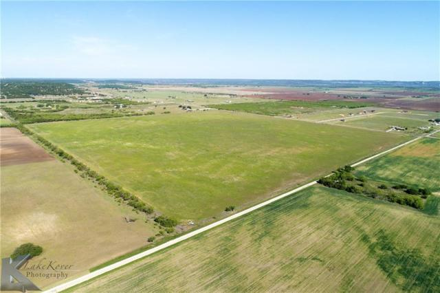 50 Ac. County Road 254, Tuscola, TX 79562 (MLS #13928710) :: The Rhodes Team