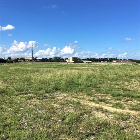 0 Martin Drive, Weatherford, TX 76086 (MLS #13931240) :: The Mitchell Group