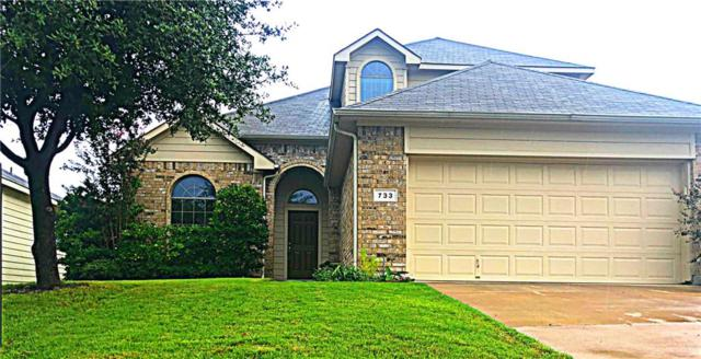 733 San Felipe Trail, Fort Worth, TX 76052 (MLS #13932006) :: RE/MAX Town & Country