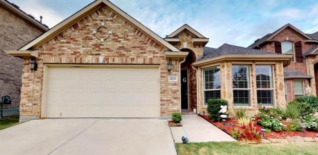 14221 Signal Hill Drive, Little Elm, TX 75068 (MLS #13932773) :: RE/MAX Landmark