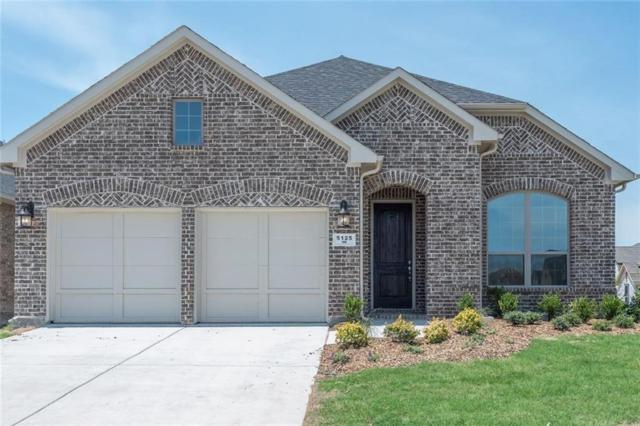 5125 Ember Place, Little Elm, TX 76227 (MLS #13933906) :: Robbins Real Estate Group