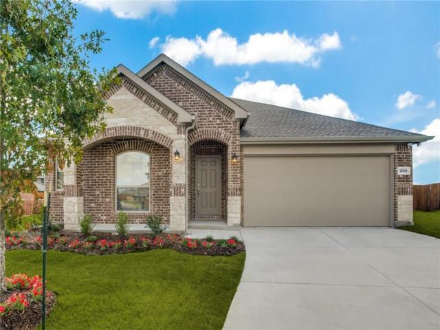 1203 Timberfalls Drive, Anna, TX 75409 (MLS #13936205) :: RE/MAX Landmark