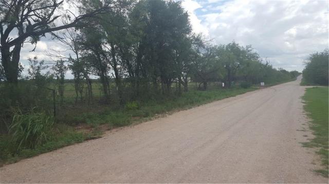 5101 County Road 161, Bangs, TX 76823 (MLS #13936714) :: North Texas Team | RE/MAX Advantage