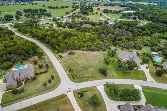 153 Turkey Creek Drive, Aledo, TX 76008 (MLS #13939016) :: The Heyl Group at Keller Williams