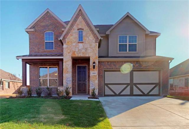 6605 Meandering Creek Drive, Denton, TX 76226 (MLS #13939490) :: Real Estate By Design