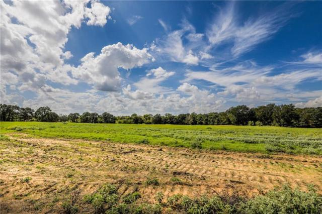 TBD-6 Keeter Springs Road, Springtown, TX 76082 (MLS #13939881) :: The Sarah Padgett Team