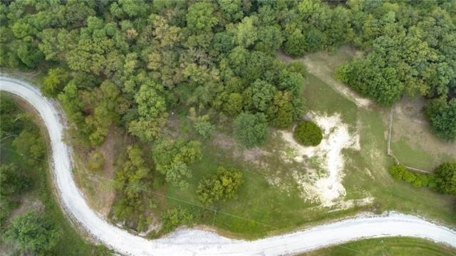 Lot 14 Forest Creek Lane, Anna, TX 75409 (MLS #13943163) :: Real Estate By Design
