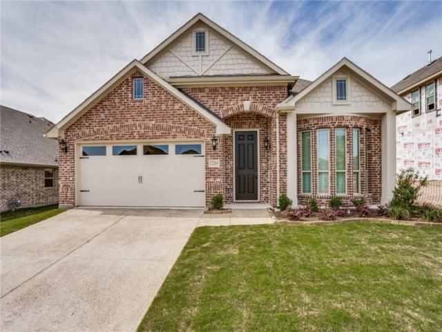 3205 Creekhaven Drive, Melissa, TX 75454 (MLS #13943385) :: Hargrove Realty Group