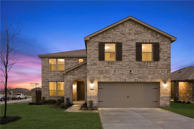 2701 Tobias Lane, Aubrey, TX 76227 (MLS #13946228) :: RE/MAX Landmark