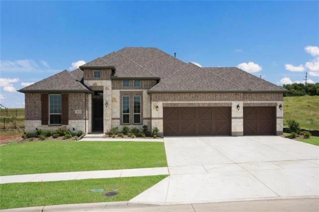 14616 Speargrass Drive, Frisco, TX 75033 (MLS #13958821) :: Lynn Wilson with Keller Williams DFW/Southlake