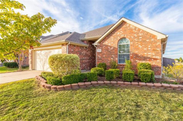 2019 Brook Meadow Drive, Forney, TX 75126 (MLS #13962021) :: RE/MAX Town & Country