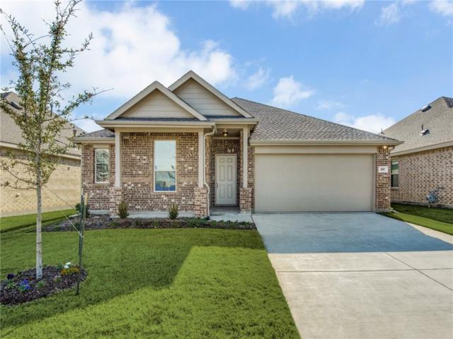 817 Evergreen Street, Princeton, TX 75407 (MLS #13962927) :: Kimberly Davis & Associates