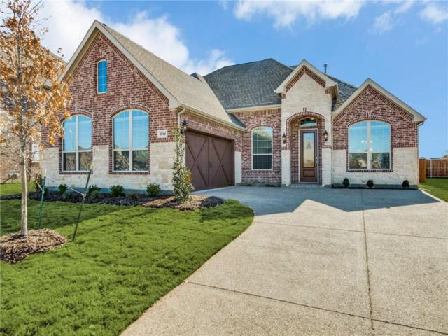 2742 Salt Creek Way, Celina, TX 75078 (MLS #13963341) :: Real Estate By Design