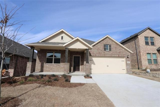 800 Bluebird Way, Celina, TX 75009 (MLS #13963967) :: Real Estate By Design
