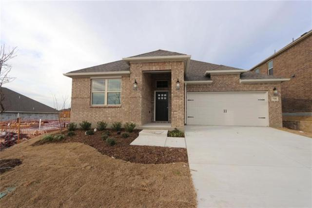 708 Monarch Lane, Celina, TX 75009 (MLS #13963983) :: Real Estate By Design