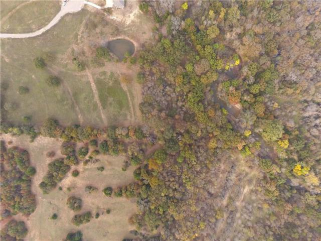 Lot 4 Fm 2931, Aubrey, TX 76227 (MLS #13968083) :: Vibrant Real Estate