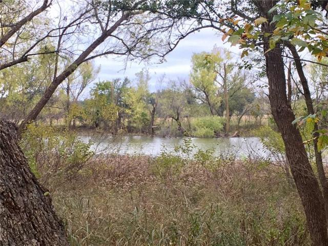 TBD Wood Duck Court, Comanche, TX 76442 (MLS #13969270) :: RE/MAX Town & Country