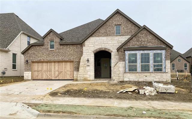 1005 Asbury Drive, Allen, TX 75013 (MLS #13969305) :: Kimberly Davis & Associates