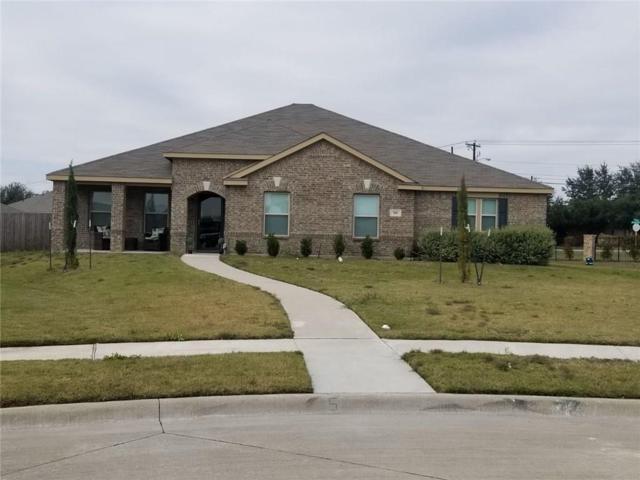 901 Dandelion Court, Desoto, TX 75115 (MLS #13971047) :: RE/MAX Pinnacle Group REALTORS