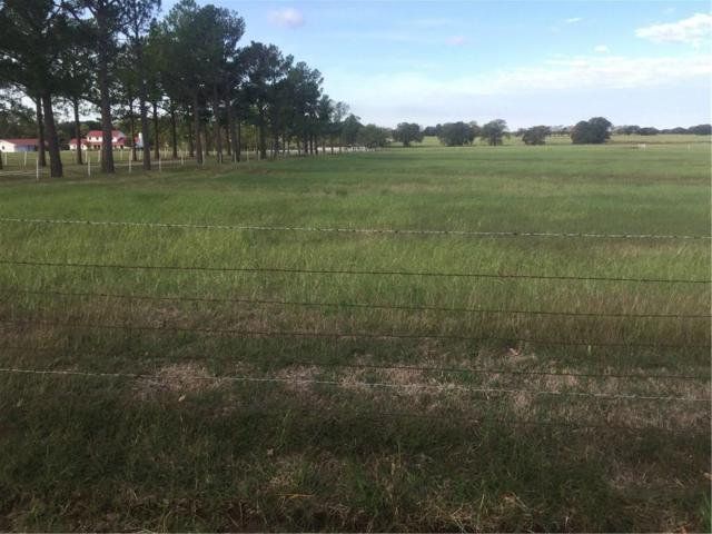 LOT 1A S Cr 251 Road, Valley View, TX 76272 (MLS #13971377) :: The Chad Smith Team