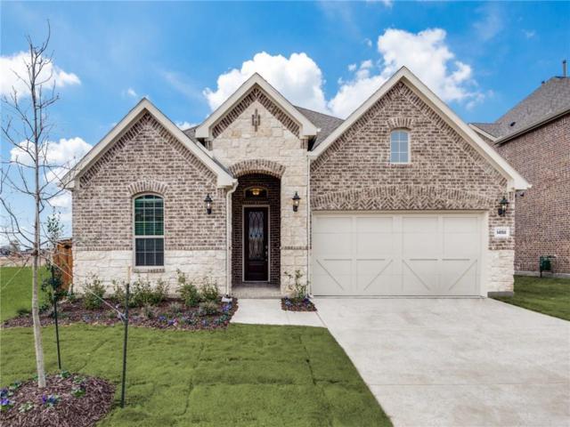 14158 Danehurst Lane, Frisco, TX 75035 (MLS #13973846) :: RE/MAX Town & Country